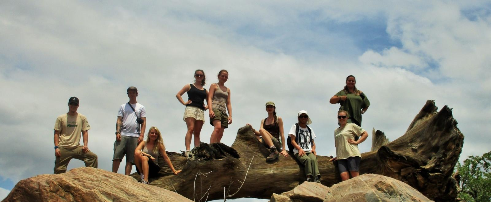 Projects Abroad volunteers at the Wild at Tuli game reserve in Botswana